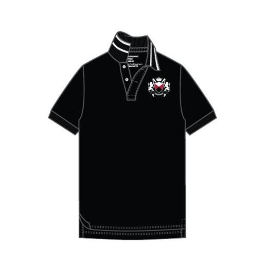 Men's Sport embroidery polo