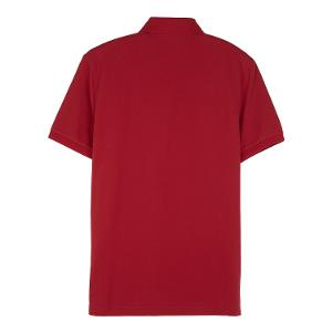 Men's Bold Polo
